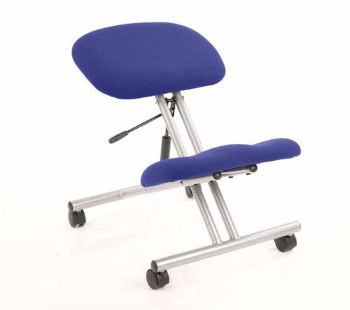 Home Office Ergonomic Orthopaedic Posture Back Chair Kneeling Stool Blue on Silver